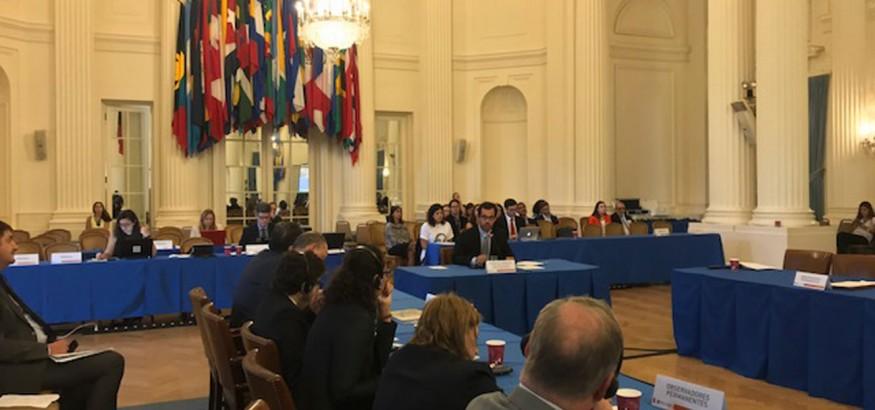 Venezuela-en-la-OEA